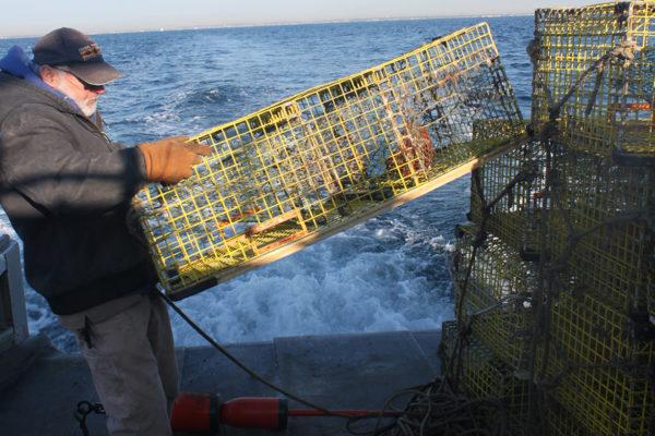 NEC_resource_fishing_02